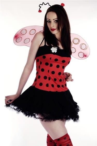 Lady Bug Ladies Fancy Dress Costume