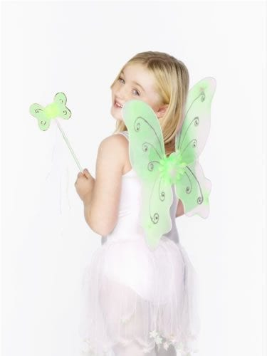 Childs Green Butterfly Wing Set