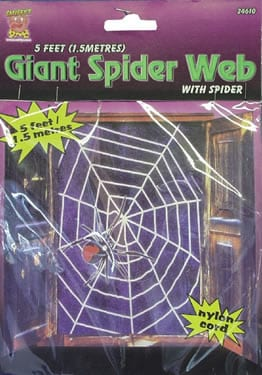 Giant Spider Web with Spider