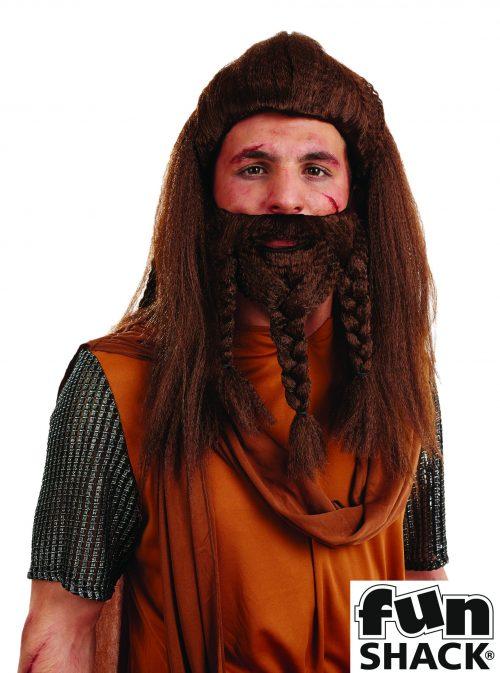 Viking Wig & Beard Set