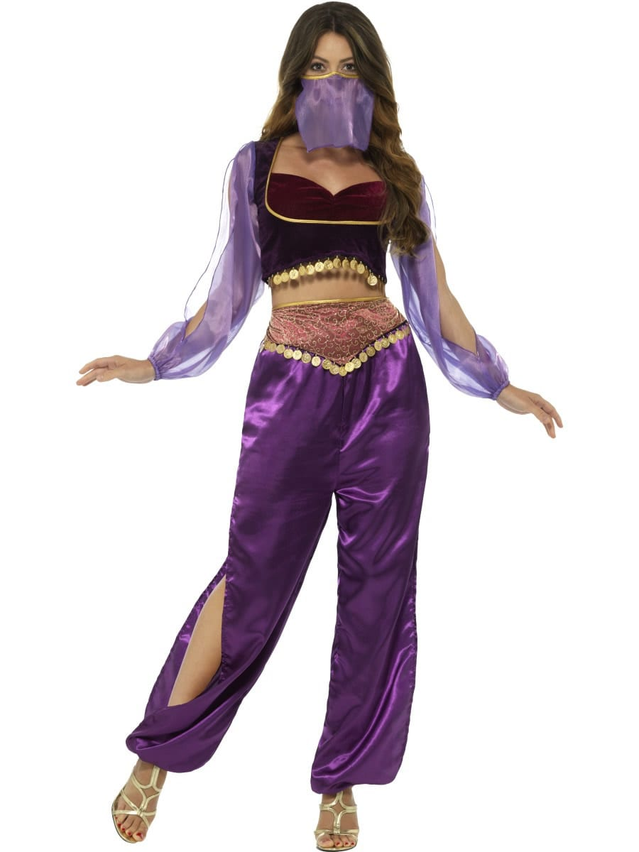 Arabian Princess Ladies Fancy Dress Costume