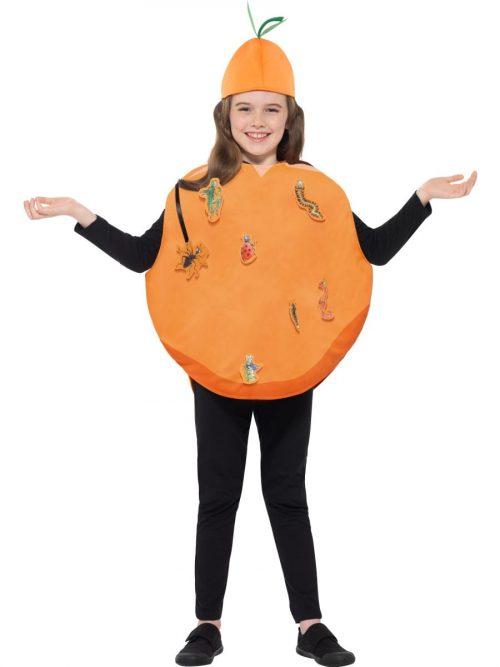 Roald Dahl James & The Giant Peach Childrens Fancy Dress Costume
