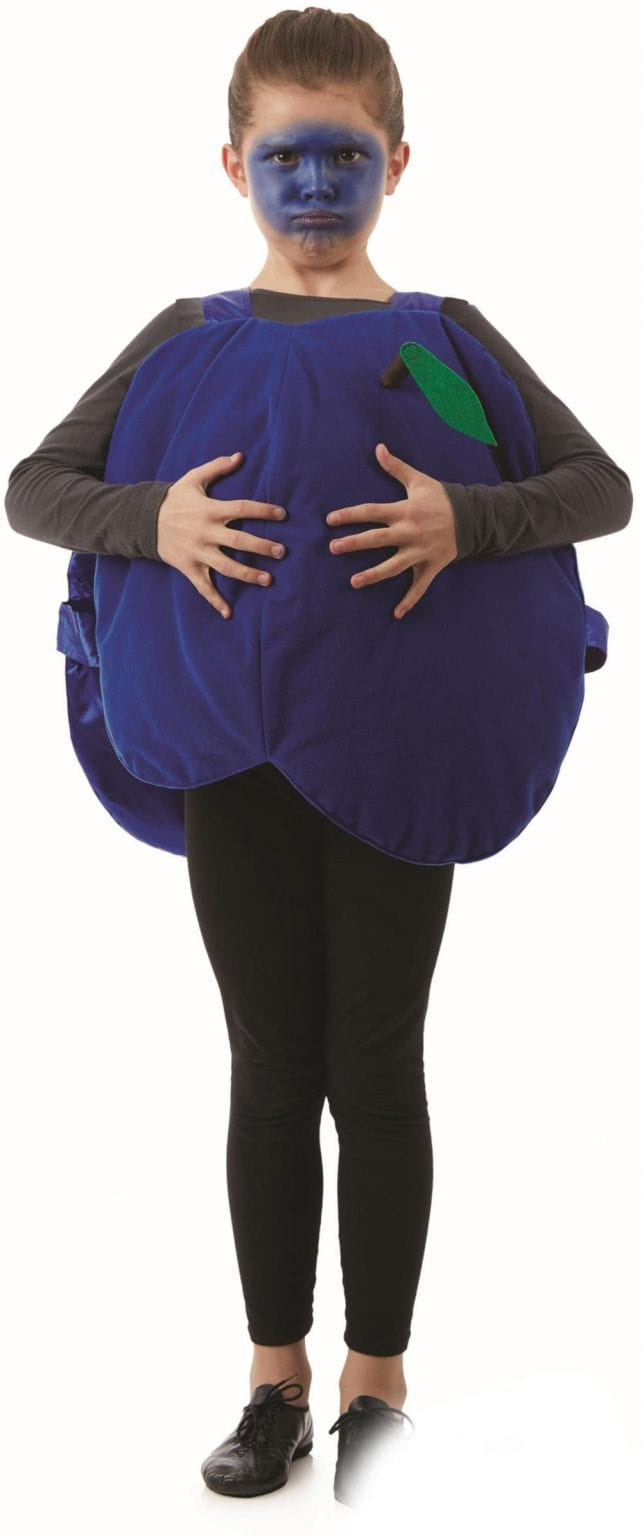 Blueberry Unisex Children's Fancy Dress Costume