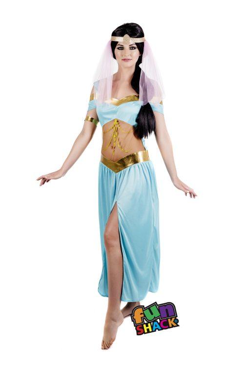 Arabian Princess Ladies Fancy Dress Costume