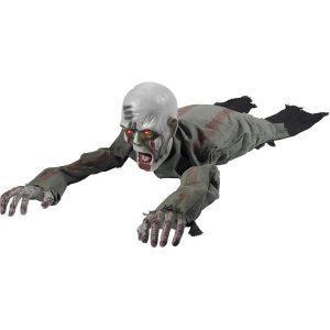 Creatures & Skeletons